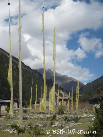 Prayer flags along trek
