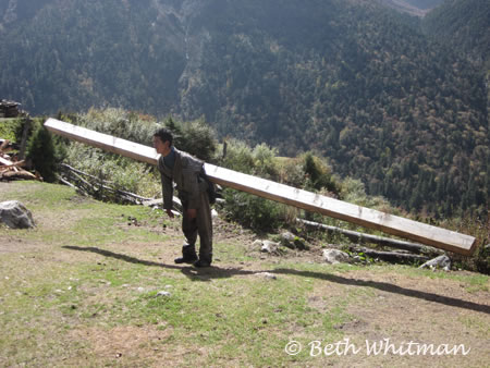 Wood Carrier in Laya