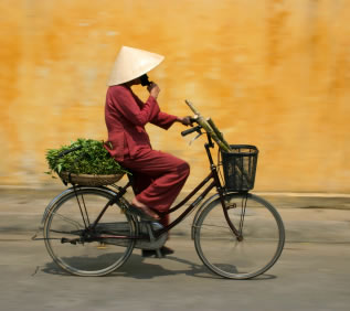 Vietnam Bike
