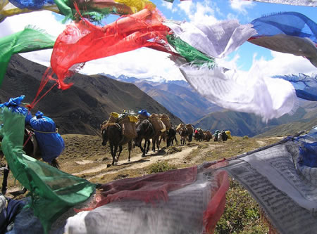 Ponies and Prayer Flags in Bhutan - Snowman Trek