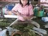 Cheroot Making in Burma