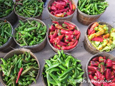 Peppers in Santa Fe