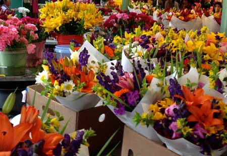 Gorgeous flowers at Pike Place Market