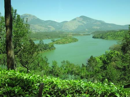View near Munnar