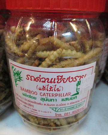Midnight snack - catepillars