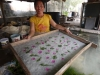 Paper making in Luang Prabang