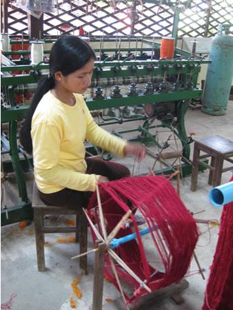 Silkworm factory