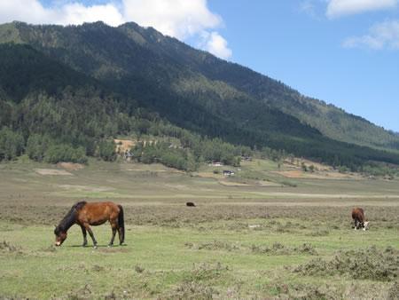 Phoblika Valley in Bhutan