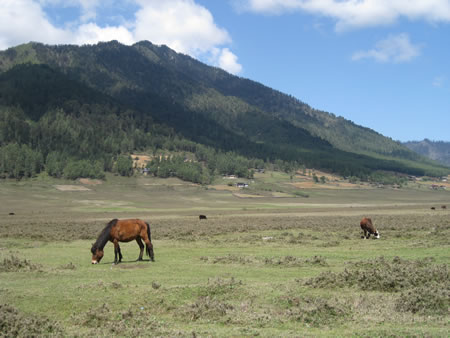 Phoblika Valley in Bhutan