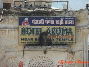 Hotel-Aroma-Pushkar-India