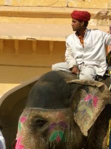 Mahout on Elephant