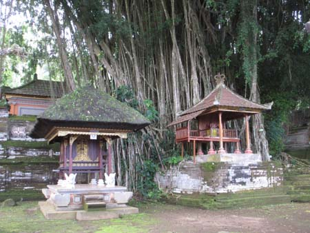 Temple Shrines