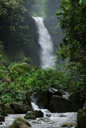 Kilimanjaro Waterfalls