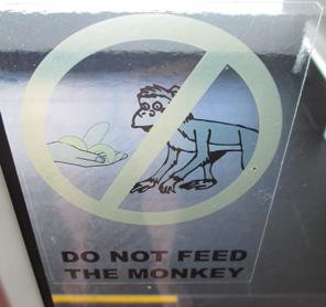 Indonesia monkey sign
