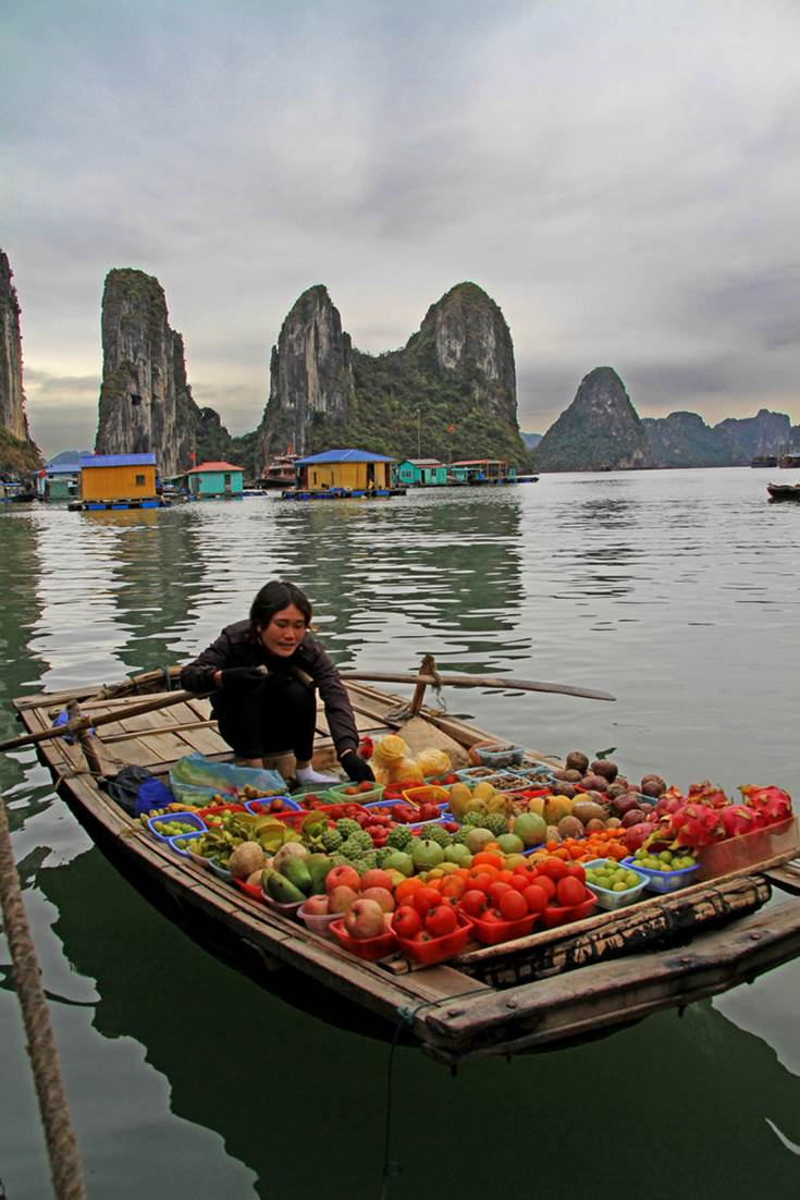 Halong Bay Fruit Vendor