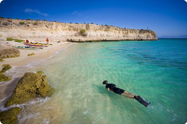 Baja tour snorkeling