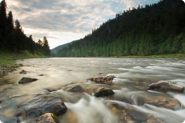 Riverdance Lodge River
